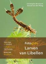 Fotogids larvenhuidjes van libellen(2)