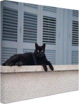 Zwarte kat aan het rusten Canvas 80x60 cm - Foto print op Canvas schilderij (Wanddecoratie)