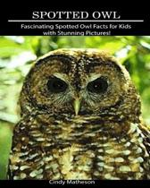Spotted Owl: Fascinating Spotted Owl Facts for Kids with Stunning Pictures!
