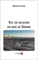 Vol de milouins en baie de Somme