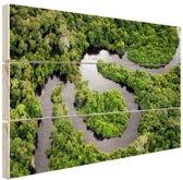 Regenwoud en Amazone Brazilie Hout 30x20 cm - klein - Foto print op Hout (Wanddecoratie)
