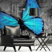 Fotobehang - Blauwe Vlinder , grijs , 5 maten