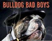 Bulldog Bad Boys Kalender 2020 Mini