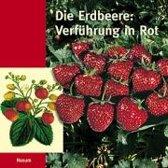 Die Erdbeere: Verführung in Rot