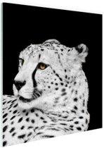 Luipaard zwart-wit  Glas 120x180 cm - Foto print op Glas (Plexiglas wanddecoratie) XXL / Groot formaat!