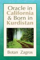 Oracle in California & Born in Kurdistan