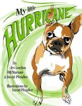 My Little Hurricane