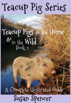 Teacup Pigs in the Home and in the Wild