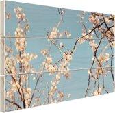 Bloesem Hout 80x60 cm - Foto print op Hout (Wanddecoratie)