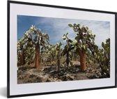 Foto in lijst - Cactussen Galapagoseilanden bij Ecuador fotolijst zwart met witte passe-partout 60x40 cm - Poster in lijst (Wanddecoratie woonkamer / slaapkamer)