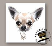 Tegel Hond Chihuahua