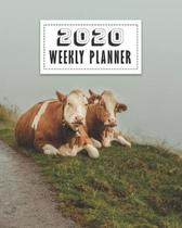 2020 Weekly Planner: Cute Cows Daily, Weekly & Monthly Planner, Organizer And Calendar For Cattle Lovers