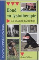 Hond en fysiotherapie