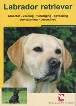 Over Dieren - De Labrador retriever