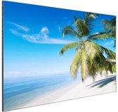 FotoCadeau.nl - Palmbomenfoto strand Aluminium 30x20 cm - Foto print op Aluminium (metaal wanddecoratie)