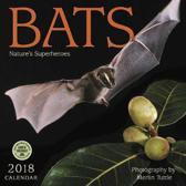 Bats 2018