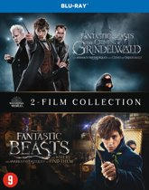 DVD cover van Fantastic Beasts And Where To Find Them 1 & 2 (Blu-ray)