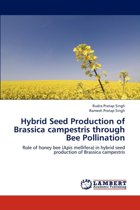 Hybrid Seed Production of Brassica Campestris Through Bee Pollination