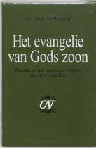 Commentaar op het Nieuwe Testament 5 - Het evangelie van Gods Zoon