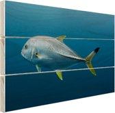 Grote vis onder water Hout 120x80 cm - Foto print op Hout (Wanddecoratie)