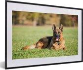 Foto in lijst - Duitse herdershond ligt op het gras fotolijst zwart met witte passe-partout 60x40 cm - Poster in lijst (Wanddecoratie woonkamer / slaapkamer)