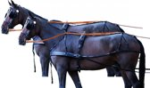 Borsttuig Standaard tweespan Pony