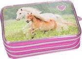 Horses Dreams 3-vaks etui, gevuld