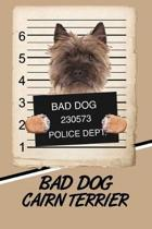 Bad Dog Cairn Terrier