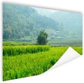 Rijstvelden in Azie foto Poster 180x120 cm - Foto print op Poster (wanddecoratie woonkamer / slaapkamer) XXL / Groot formaat!