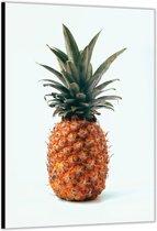 Dibond –Ananas– 60x90cm Foto op Dibond;Aluminium (Wanddecoratie van metaal)