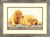 Borduurpakket Golden Retriever Puppies
