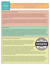 Intellectual Property Laws USA (Speedy Study Guide)