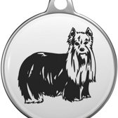 Yorkshire Terrier Tommy Tag Y001