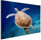 Zeeschildpad  Aluminium 60x40 cm - Foto print op Aluminium (metaal wanddecoratie)