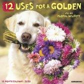 12 Uses for a Golden Kalender 2020