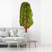 Fotobehang vinyl - Een kleurrijke snijbiet tegen een witte achtergrond breedte 180 cm x hoogte 270 cm - Foto print op behang (in 7 formaten beschikbaar)