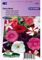 Sluis Garden - Petunia Choice Mix