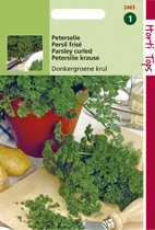 Hortitops Zaden - Peterselie Gekrulde Donkergroene