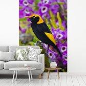 Fotobehang vinyl - Prieelvogel tussen de paarse bloemen breedte 270 cm x hoogte 400 cm - Foto print op behang (in 7 formaten beschikbaar)