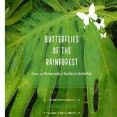 Butterflies of the Rainforest