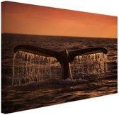 FotoCadeau.nl - Walvisstaart bij zonsondergang Canvas 30x20 cm - Foto print op Canvas schilderij (Wanddecoratie)