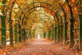 Papermoon Autumn Garden Vlies Fotobehang 350x260cm 7-Banen