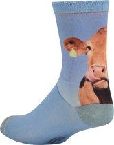 Sock My Feet - Sock My Cow -  Damessok – Katoen – geprinte sok - 39-42