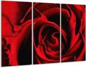 Canvas schilderij Roos | Rood, Zwart | 120x80cm 3Luik