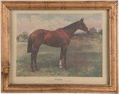 Clayre & Eef Schilderij 46x2x36 cm