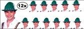 12x Tiroler hoed groen bayern