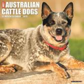 Just Australian Cattle Dogs 2020 Wall Calendar (Dog Breed Calendar)