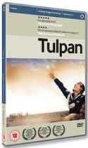 Tulpan (Import)