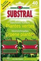 Meststofstaafjes voor groene planten - set van 40 stuks