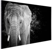 Olifant zwart-wit Aluminium 90x60 cm - Foto print op Aluminium (metaal wanddecoratie)
